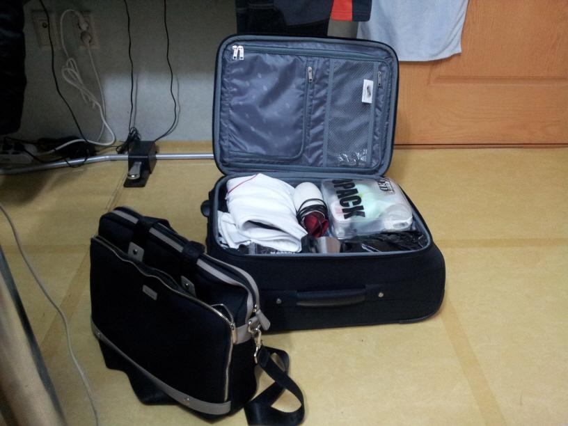 06. 캐리어 가방.jpg